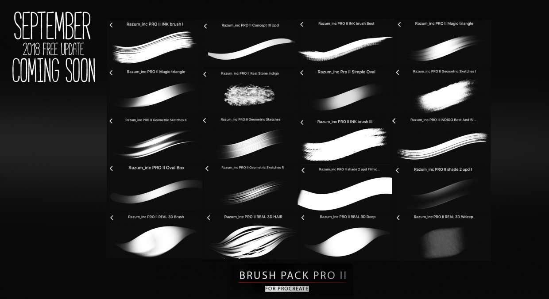 💥[Free & Premium] RaZum_Brush Pack PRO